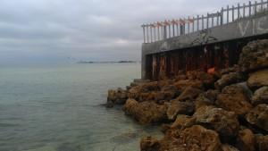 adventuring coral