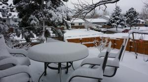 snow new deck